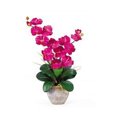 Nearly Natural Double Stem Phalaenopsis Silk Orchid Arrangement (€43) ❤ liked on Polyvore featuring home, home decor, floral decor, orchid flower arrangement, silk floral arrangement, stacked flower pots, orchid floral arrangement and orchid pots