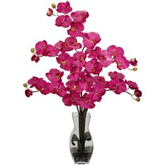 Nearly Natural Phalaenopsis With Vase Silk Flower Arrangement ($150) ❤ liked on Polyvore featuring home, home decor, floral decor, silk floral arrangement, fabric flowers, flower stem, artificial floral arrangement and faux floral arrangement