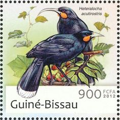 Huia stamps - mainly images - gallery format Extinct Birds, Extinct Animals, Bird Art, New Zealand, Nativity, Stamps, Robins, Gw, Gallery