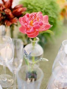 single-flower-in-glass-vase