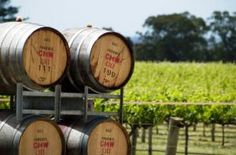 Luxury travel in South Australia - wine barrels in the Barossa Valley via myLusciousLife.jpg