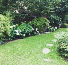 Annabelle rabatten i sin helhet. Om än decimerad efter alla slagregn... Det enda negativa med riktigt stora blomställningar. Behöver jag nämna att det blir Annabelle även i nästa trädgård ... . . #hydrangeaarborescensannabelle #hydrangea #garden #mygarden #trädgård #tradgardsinspo #have #hage #garten #jardin #tuin #exteriors #greenbalancegardendesign #grönbalansträdgårdsdesign