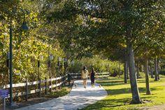 Parks at Playa Vista - new homes Los Angeles - walking