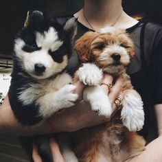 May I have you both