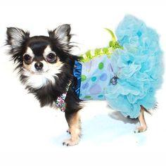 Blue Spring Bustier Dress