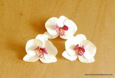 coffee filter orchid- when i made these, i used the #4 pattern here ( http://tallystreasury.com/patterns/ ) because i had no old orchids lying around.