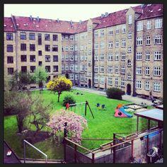 My backyard in Copenhagen where summer is just around the corner