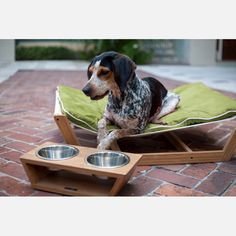 We love this stylish dog hammock and food bowl combo. Do you have a pampered pooch? Pin your pics! #doggyhotel