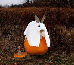 This Bunny is Ready for  Halloween!
