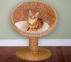 wicker cat bed - Google Search