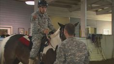 A traumatized soldier may go to a doctor, a psychiatrist and a pharmacist. But his best move might be to go see a horse. Horse Therapy, Horse And Human, Ptsd, Horse Racing, Horses, Eat, Falling Down, Horse