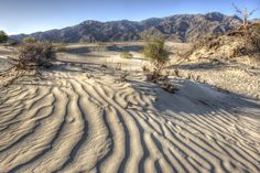Lines of desert - Morning in Death Valley...