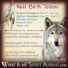 Wolf Totem:  always had a deep connection with Wolves!  This makes me so happy that Wolf Birth Totem is Totem!!!!