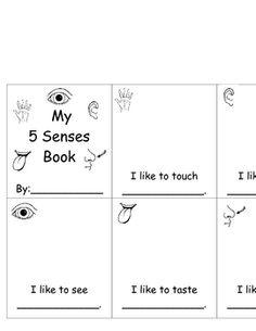 5 Senses Book - freebie.