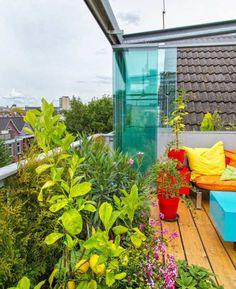 Schöne Aussicht aus dem Balkon - Dachterrasse mit Verglasung