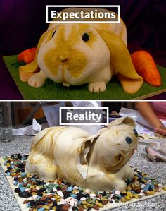 Expectations Vs Reality: 100 failed attempt to make a cake Haha Funny, Hilarious, Funny Stuff, Epic Cake Fails, Funny Videos, Funny Images, Funny Pictures, Bad Cakes, Baking Fails