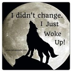 I woke up and chose to evolve 🐺⚜️ Dark Quotes, Strong Quotes, Positive Quotes, Me Quotes, Motivational Quotes, Inspirational Quotes, Belief Quotes, Anger Quotes, Lone Wolf Quotes