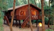 Cape Vidal Log Cabins, tucked away in the forest that grows along the sand dunes. Places To Travel, Places To See, Snow Resorts, Wetland Park, Going On Holiday, Africa Travel, Holiday Destinations, South Africa, The Good Place