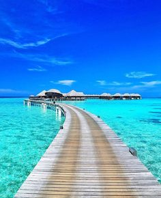 20 Most Beautiful Islands in the World - Maldives Maldives Destinations, Maldives Vacation, Visit Maldives, Maldives Hotels, Honeymoon Destinations, Vacation Places, Dream Vacations, Vacation Spots, Places To Travel