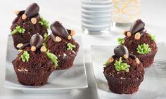 Manni-Maulwurf-Muffins Rezept   Dr. Oetker