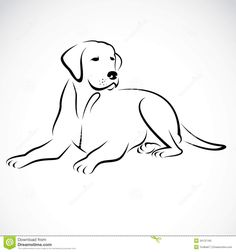 Vector Image Of An Dog Labrador - Download From Over 38 Million High Quality Stock Photos, Images, Vectors. Sign up for FREE today. Image: 34137165
