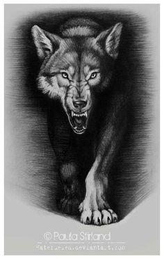 Tattoo wolf sketch skulls 53 ideas for 2019 - Tattoo wolf sketch skulls 53 ideas for 2019 You are in the right place about Tattoo wolf ske - Owl Skull Tattoos, Animal Tattoos, Body Art Tattoos, Cool Tattoos, Wolf Growling, Wolf Tattoo Sleeve, Tattoo Wolf, Arm Tattoo, Headdress Tattoo