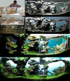 How To Choose A Tropical Fish Aquarium The first decision you must make when you buy an aquarium is whether you plan to keep freshwater fish or saltwater Planted Aquarium, Aquarium Terrarium, Aquarium Setup, Aquarium Design, Saltwater Aquarium, Freshwater Aquarium, Goldfish Aquarium, Aquariums Super, Amazing Aquariums