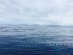 The ocean blues