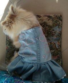 Vestito jeans per Maya