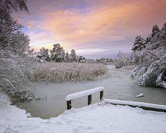 Christmas In Scotland   Blairs Loch, Forres, Moray, Scotland