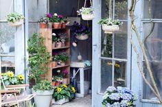 Buitenleven | Nieuwe wildernis in je tuin - Stijlvol Styling woonblog www.stijlvolstyling.com