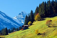 Murren (Suiza)Quizá Heidi, Pedro y Copito de Nieve corrieron por las laderas de Murren a la sombra de los Alpes suizos, quizá seas tú el que corra por ellas después de localizar un pueblito casi idéntico al de la serie animada. De lo que no hay duda es de que Murren es la viva imagen de la idea que todos tenemos en la cabeza de un pueblo perdido en las montañas.