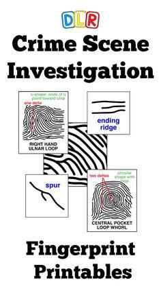 Forensic Science Crime Scene Investigation Activity   Dna ...