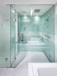 Steam Shower - Good design, like the accent tile, colors, lever window, floor is flush with shower (no step), hand wand is by the bench to sit and rinse off
