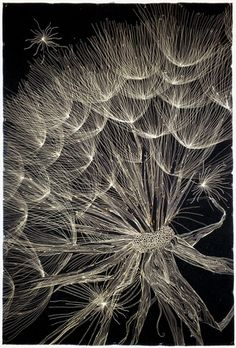 'Dandelion' thread painting by Kate Themel. Thread Painting, Thread Art, Flower Quilts, Landscape Quilts, Artist Gallery, Free Motion Quilting, Embroidery Art, Fabric Art, Machine Quilting