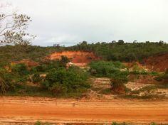 Terreno à venda com vista mar com 118 hectares, Itacimirim, Bahia, Brasil.