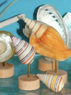 Sea Shell Stands Hand Made