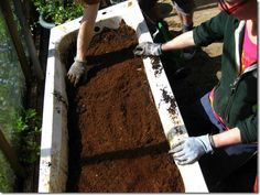 Building Up Soil for a Nutrient-Rich Raised Bed