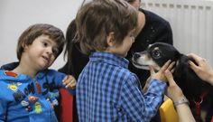 Tener un perro en casa podría reducir los síntomas del asma