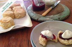 gluten-free scones, made with cream in place of butter to make them easier to make.