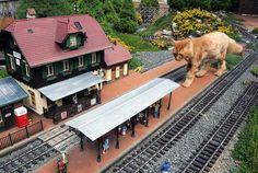 Garden Railway - Pixdaus