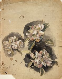"Apple Blossom (Study for Rossetti's ""Vision of Fiammetta""), c. 1878   Frederic James Shields (1833-1911)"