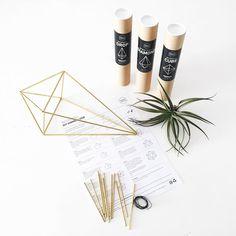 Doe-het-zelf pakketten voor het maken van je eigen geometrische vormen voor het ophangen van luchtplanten oftewel tillandsias...