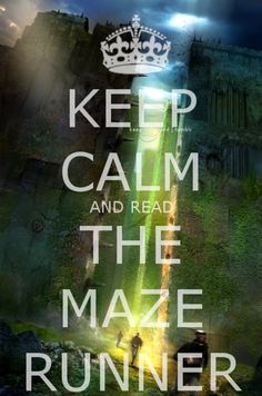 I read the Maze Runner.  Just realized it is a trilogy.  I will consider the other two books...