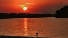 Sunset Grand Rapids, Ohio