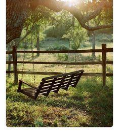 Swing in a field