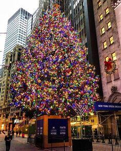 """Our hearts grow tender with childhood memories and love of kindred, and we are better throughout the year for having, in spirit, become a child by pictures_of_newyork"