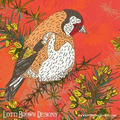 Bird art - Artwork detail - goldfinch on gorse - colourful illustration by Lotti Brown Nature Artwork, Bird Artwork, Online Art Store, Monkey Art, Hedgehog Art, Open Art, Thing 1, Square Art, Goldfinch