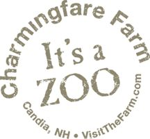 Children will love the petting zoo, horse drawn rides, zoo animals and special events. Join us for Halloween, Christmas, Sleigh Rides and more. Petting Zoo, Trail Riding, Zoo Animals, Summer Fun, Camping, Horses, Traditional, Places, Free