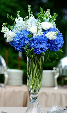 Nice mix of colors and easy to do.  Pale blues, cobalt (almost) and white.